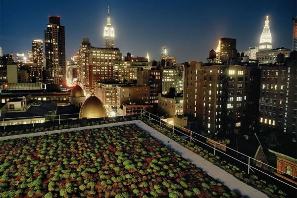 Green Roof Can Keep Your Building Up To 84-percent Cooler