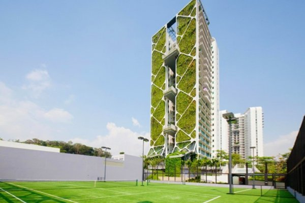 World's Largest Vertical Garden Sets Guinness Record At Tree House