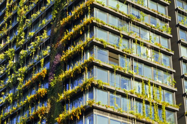 The World's Vertical Garden Lives and Breathes In Sydney