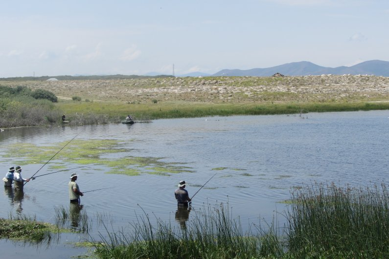 Crucians became permanent residents of Lake Sevan but the endemic fish species like Sevan trout on the brink of extinction