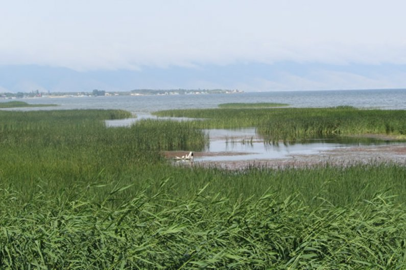 Sevan near Lchashen. Water covered huge areas of green fields