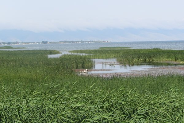 Is Sevan Lake Ready to Rise? (Photo Coverage)