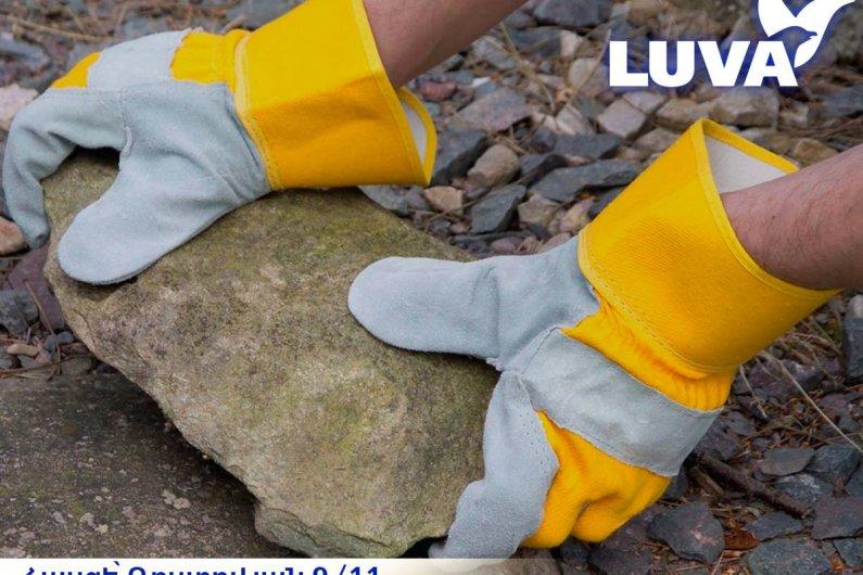 Զոդողի ձեռնոցներ